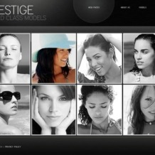 Model Agency Flash CMS Template