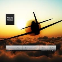 Flight School Flash Template