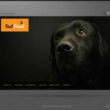 Dog Flash Template