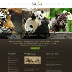 Animals & Pets Website Template