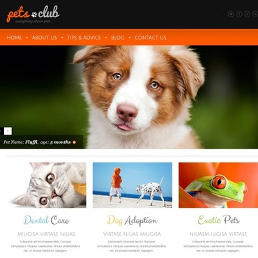 Animals & Pets Responsive WordPress Theme