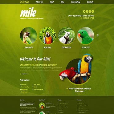 Birds WordPress Theme