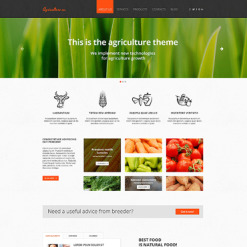 Vegetable Responsive Website Template