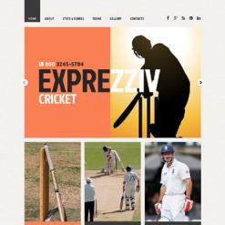 Cricket Responsive Website Template