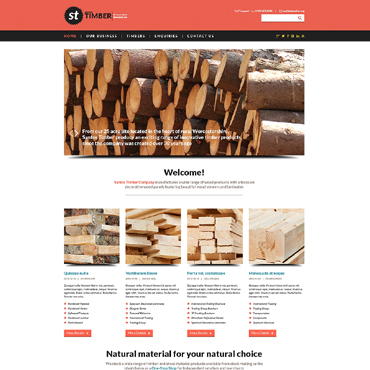Timber Responsive Website Template