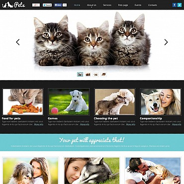 Animals & Pets Flash CMS Template