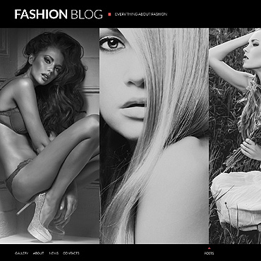 Fashion Blog Website Template
