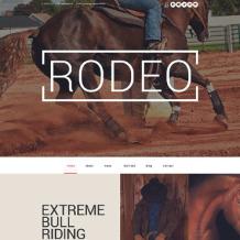 Entertainmnet Responsive WordPress Theme