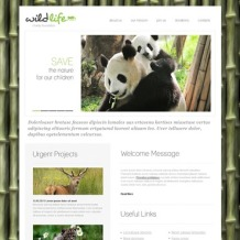 Animal Shelter PSD Template
